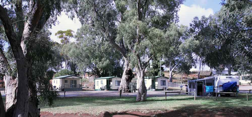 Cabins at the caravan park