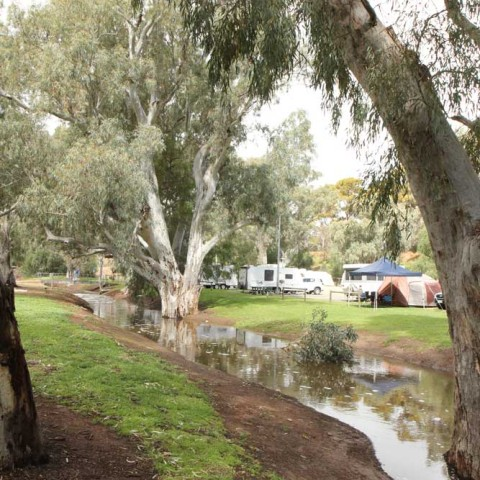 Caravan Park After the Rain 3
