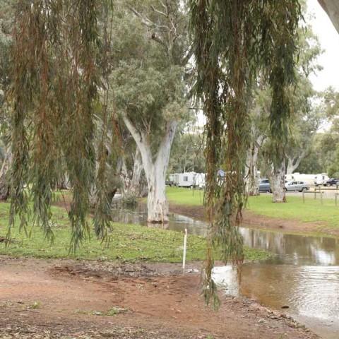 Caravan Park After the Rain 5