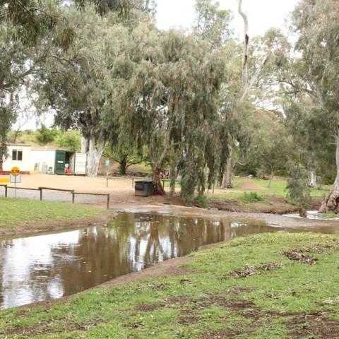 Caravan Park After the Rain 7